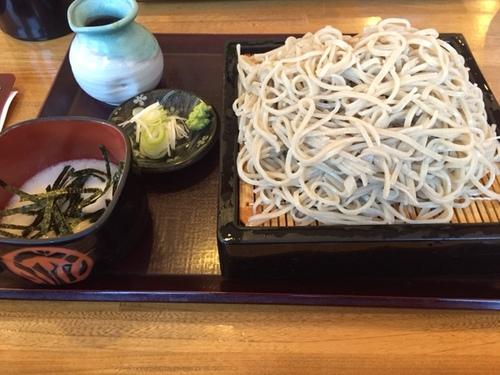 syoku2016050104_sarasina.jpg